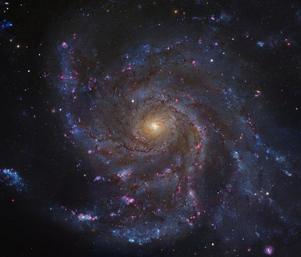 фотоснимки объектов каталога Месье - М101
