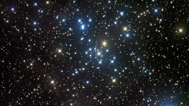 фотоснимки объектов каталога Месье - М41