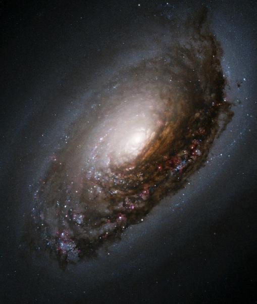 фотоснимки объектов каталога Месье - М64