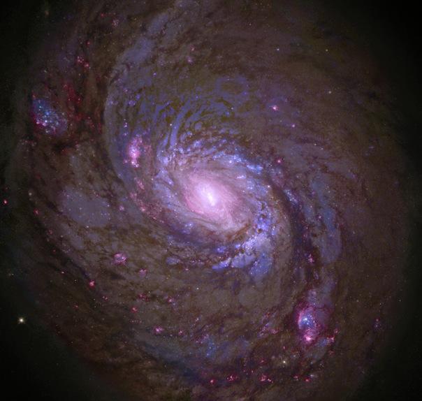 фотоснимки объектов каталога Месье - М77