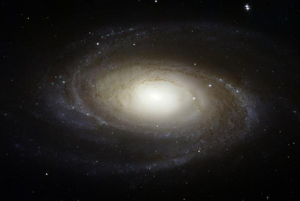 фотоснимки объектов каталога Месье - М81