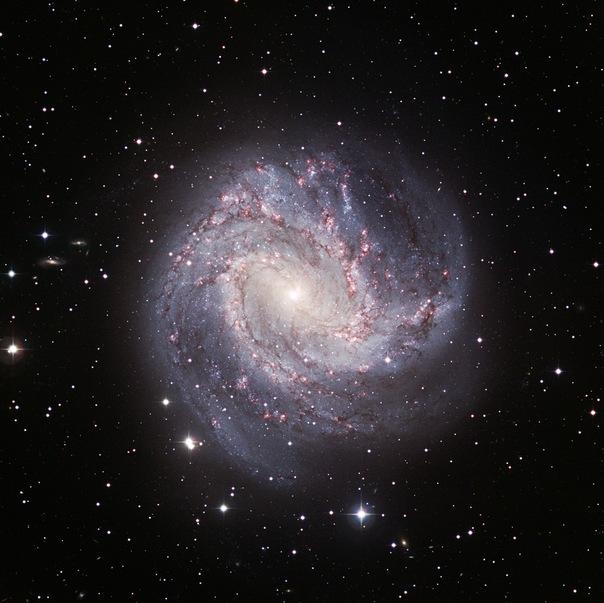 фотоснимки объектов каталога Месье - М83